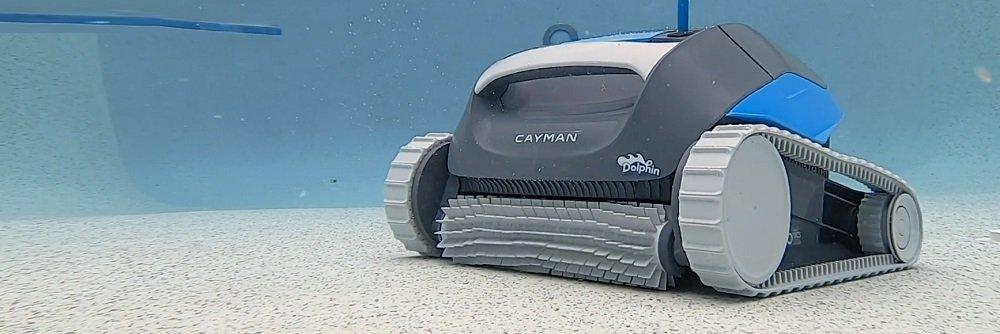 Dolphin Cayman